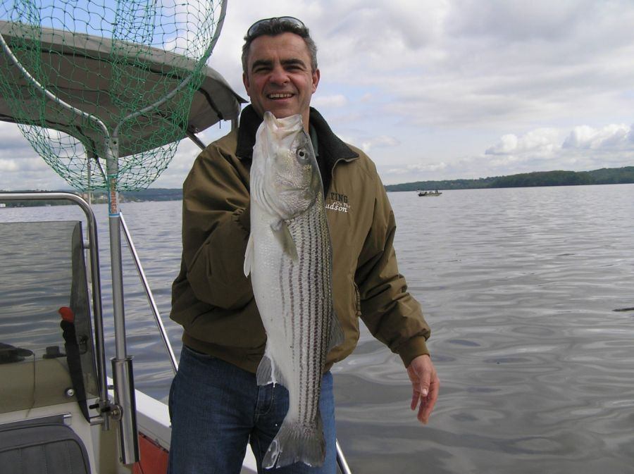 Jvargo Son And Striped Bass